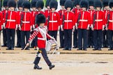 The Colonel's Review 2014. Horse Guards Parade, Westminster, London,  United Kingdom, on 07 June 2014 at 11:14, image #354