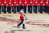 The Colonel's Review 2014. Horse Guards Parade, Westminster, London,  United Kingdom, on 07 June 2014 at 11:14, image #355