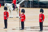 The Colonel's Review 2014. Horse Guards Parade, Westminster, London,  United Kingdom, on 07 June 2014 at 11:15, image #356