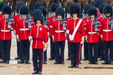 The Colonel's Review 2014. Horse Guards Parade, Westminster, London,  United Kingdom, on 07 June 2014 at 11:15, image #358