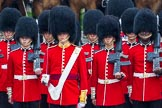 The Colonel's Review 2014. Horse Guards Parade, Westminster, London,  United Kingdom, on 07 June 2014 at 11:15, image #359