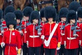 The Colonel's Review 2014. Horse Guards Parade, Westminster, London,  United Kingdom, on 07 June 2014 at 11:15, image #361