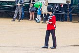 The Colonel's Review 2014. Horse Guards Parade, Westminster, London,  United Kingdom, on 07 June 2014 at 11:16, image #365