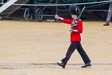 The Colonel's Review 2014. Horse Guards Parade, Westminster, London,  United Kingdom, on 07 June 2014 at 11:16, image #366