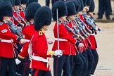 The Colonel's Review 2014. Horse Guards Parade, Westminster, London,  United Kingdom, on 07 June 2014 at 11:16, image #369