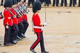 The Colonel's Review 2014. Horse Guards Parade, Westminster, London,  United Kingdom, on 07 June 2014 at 11:16, image #370