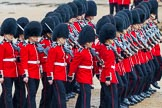The Colonel's Review 2014. Horse Guards Parade, Westminster, London,  United Kingdom, on 07 June 2014 at 11:16, image #371