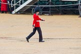 The Colonel's Review 2014. Horse Guards Parade, Westminster, London,  United Kingdom, on 07 June 2014 at 11:16, image #372