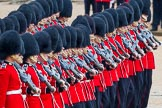 The Colonel's Review 2014. Horse Guards Parade, Westminster, London,  United Kingdom, on 07 June 2014 at 11:16, image #374