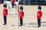 The Colonel's Review 2014. Horse Guards Parade, Westminster, London,  United Kingdom, on 07 June 2014 at 11:17, image #378