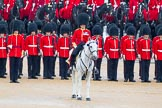 The Colonel's Review 2014. Horse Guards Parade, Westminster, London,  United Kingdom, on 07 June 2014 at 11:18, image #379