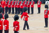 The Colonel's Review 2014. Horse Guards Parade, Westminster, London,  United Kingdom, on 07 June 2014 at 11:18, image #381