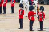 The Colonel's Review 2014. Horse Guards Parade, Westminster, London,  United Kingdom, on 07 June 2014 at 11:18, image #382
