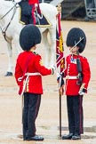 The Colonel's Review 2014. Horse Guards Parade, Westminster, London,  United Kingdom, on 07 June 2014 at 11:18, image #383