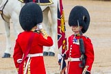 The Colonel's Review 2014. Horse Guards Parade, Westminster, London,  United Kingdom, on 07 June 2014 at 11:18, image #384