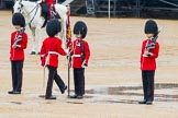 The Colonel's Review 2014. Horse Guards Parade, Westminster, London,  United Kingdom, on 07 June 2014 at 11:19, image #385