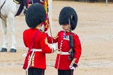 The Colonel's Review 2014. Horse Guards Parade, Westminster, London,  United Kingdom, on 07 June 2014 at 11:19, image #386