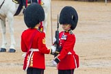 The Colonel's Review 2014. Horse Guards Parade, Westminster, London,  United Kingdom, on 07 June 2014 at 11:19, image #387