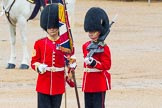 The Colonel's Review 2014. Horse Guards Parade, Westminster, London,  United Kingdom, on 07 June 2014 at 11:19, image #389