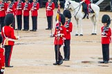 The Colonel's Review 2014. Horse Guards Parade, Westminster, London,  United Kingdom, on 07 June 2014 at 11:19, image #390