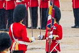 The Colonel's Review 2014. Horse Guards Parade, Westminster, London,  United Kingdom, on 07 June 2014 at 11:19, image #392
