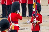 The Colonel's Review 2014. Horse Guards Parade, Westminster, London,  United Kingdom, on 07 June 2014 at 11:19, image #393