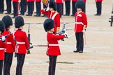 The Colonel's Review 2014. Horse Guards Parade, Westminster, London,  United Kingdom, on 07 June 2014 at 11:20, image #403