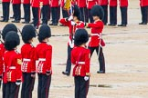The Colonel's Review 2014. Horse Guards Parade, Westminster, London,  United Kingdom, on 07 June 2014 at 11:20, image #406