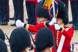 The Colonel's Review 2014. Horse Guards Parade, Westminster, London,  United Kingdom, on 07 June 2014 at 11:20, image #407
