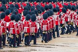 The Colonel's Review 2014. Horse Guards Parade, Westminster, London,  United Kingdom, on 07 June 2014 at 11:21, image #410
