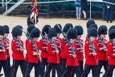 The Colonel's Review 2014. Horse Guards Parade, Westminster, London,  United Kingdom, on 07 June 2014 at 11:21, image #412