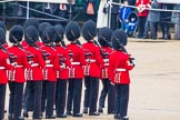 The Colonel's Review 2014. Horse Guards Parade, Westminster, London,  United Kingdom, on 07 June 2014 at 11:21, image #413