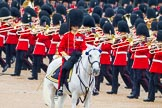 The Colonel's Review 2014. Horse Guards Parade, Westminster, London,  United Kingdom, on 07 June 2014 at 11:22, image #414