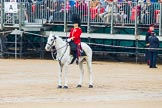 The Colonel's Review 2014. Horse Guards Parade, Westminster, London,  United Kingdom, on 07 June 2014 at 11:22, image #415