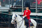 The Colonel's Review 2014. Horse Guards Parade, Westminster, London,  United Kingdom, on 07 June 2014 at 11:22, image #416