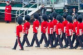 The Colonel's Review 2014. Horse Guards Parade, Westminster, London,  United Kingdom, on 07 June 2014 at 11:22, image #417