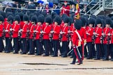 The Colonel's Review 2014. Horse Guards Parade, Westminster, London,  United Kingdom, on 07 June 2014 at 11:23, image #422