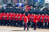 The Colonel's Review 2014. Horse Guards Parade, Westminster, London,  United Kingdom, on 07 June 2014 at 11:23, image #423