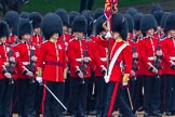 The Colonel's Review 2014. Horse Guards Parade, Westminster, London,  United Kingdom, on 07 June 2014 at 11:24, image #434