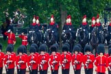 The Colonel's Review 2014. Horse Guards Parade, Westminster, London,  United Kingdom, on 07 June 2014 at 11:24, image #438