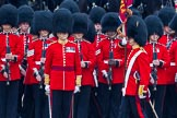 The Colonel's Review 2014. Horse Guards Parade, Westminster, London,  United Kingdom, on 07 June 2014 at 11:25, image #442
