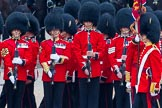 The Colonel's Review 2014. Horse Guards Parade, Westminster, London,  United Kingdom, on 07 June 2014 at 11:25, image #443