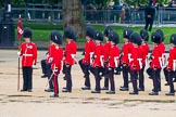 The Colonel's Review 2014. Horse Guards Parade, Westminster, London,  United Kingdom, on 07 June 2014 at 11:26, image #446