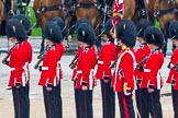 The Colonel's Review 2014. Horse Guards Parade, Westminster, London,  United Kingdom, on 07 June 2014 at 11:27, image #448