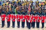 The Colonel's Review 2014. Horse Guards Parade, Westminster, London,  United Kingdom, on 07 June 2014 at 11:27, image #450