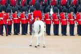 The Colonel's Review 2014. Horse Guards Parade, Westminster, London,  United Kingdom, on 07 June 2014 at 11:27, image #451