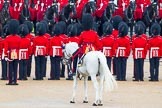 The Colonel's Review 2014. Horse Guards Parade, Westminster, London,  United Kingdom, on 07 June 2014 at 11:28, image #452