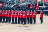 The Colonel's Review 2014. Horse Guards Parade, Westminster, London,  United Kingdom, on 07 June 2014 at 11:28, image #453