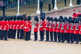 The Colonel's Review 2014. Horse Guards Parade, Westminster, London,  United Kingdom, on 07 June 2014 at 11:28, image #454
