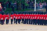 The Colonel's Review 2014. Horse Guards Parade, Westminster, London,  United Kingdom, on 07 June 2014 at 11:28, image #456